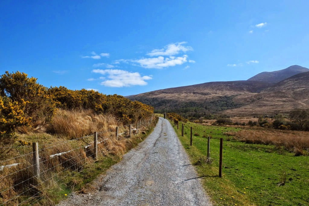 Tomies Mountain Walk, County Kerry, Killarney, Ireland, Walks, #48walks