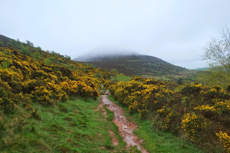 Eildon Hills, Scottish Borders, St Cuthberts Way