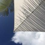 {More} Snapshots of Mauritius