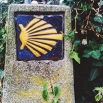 Snapshots of The Way: Signs and Symbols