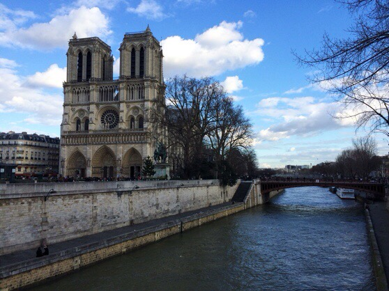 Snapshots of Paris, Notre Dame, Paris in WInter