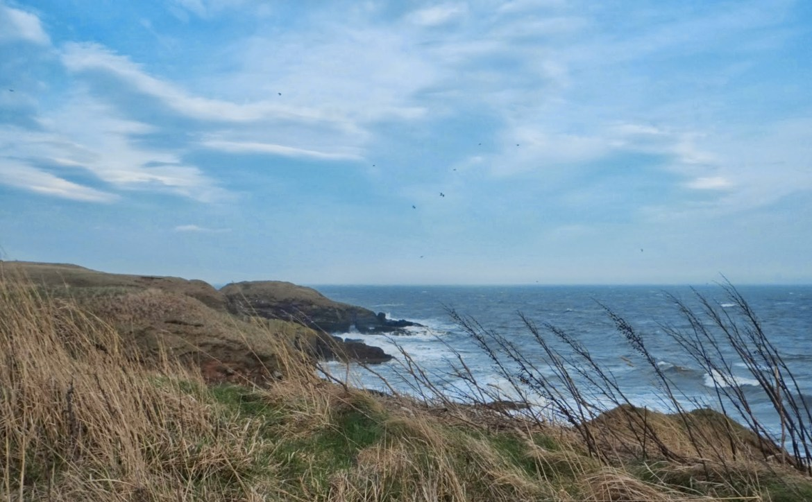 Aberdeen Coastal Trails, Collieston, Scotland