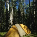 A Letter to My Nieces and Nephews about Camping