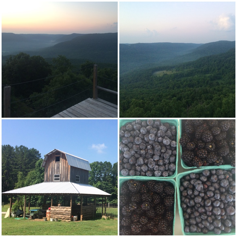 Summer Grateful, Arkansas, Summer