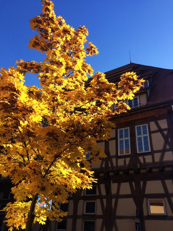 Tubingen, Germany in the Fall