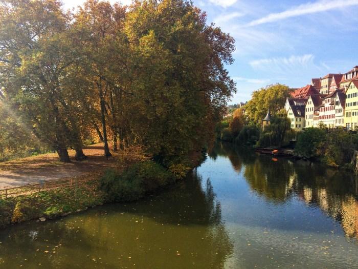 Late October in Tübingen, Snapshots of Fall in Germany, Autumn, Deutschland, Tubingen,