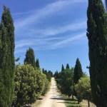 Snapshots of Tuscany, Italy