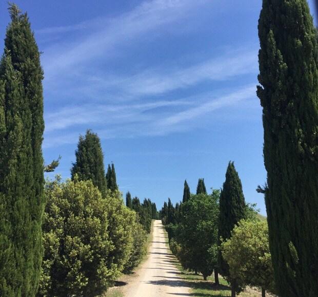 Snapshots of Tuscany