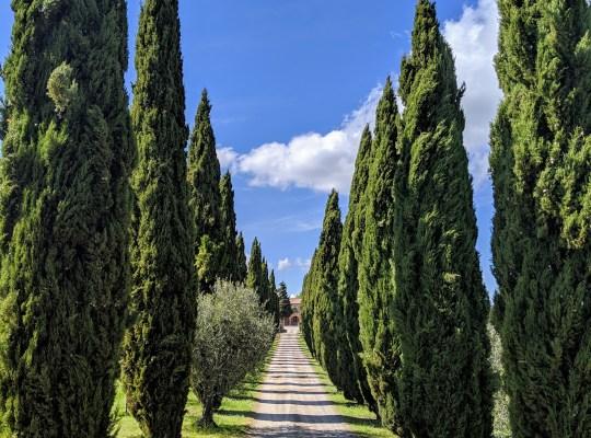 Tuscany 2019 01