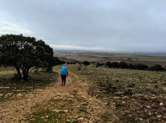 Camino, On Pilgrimage