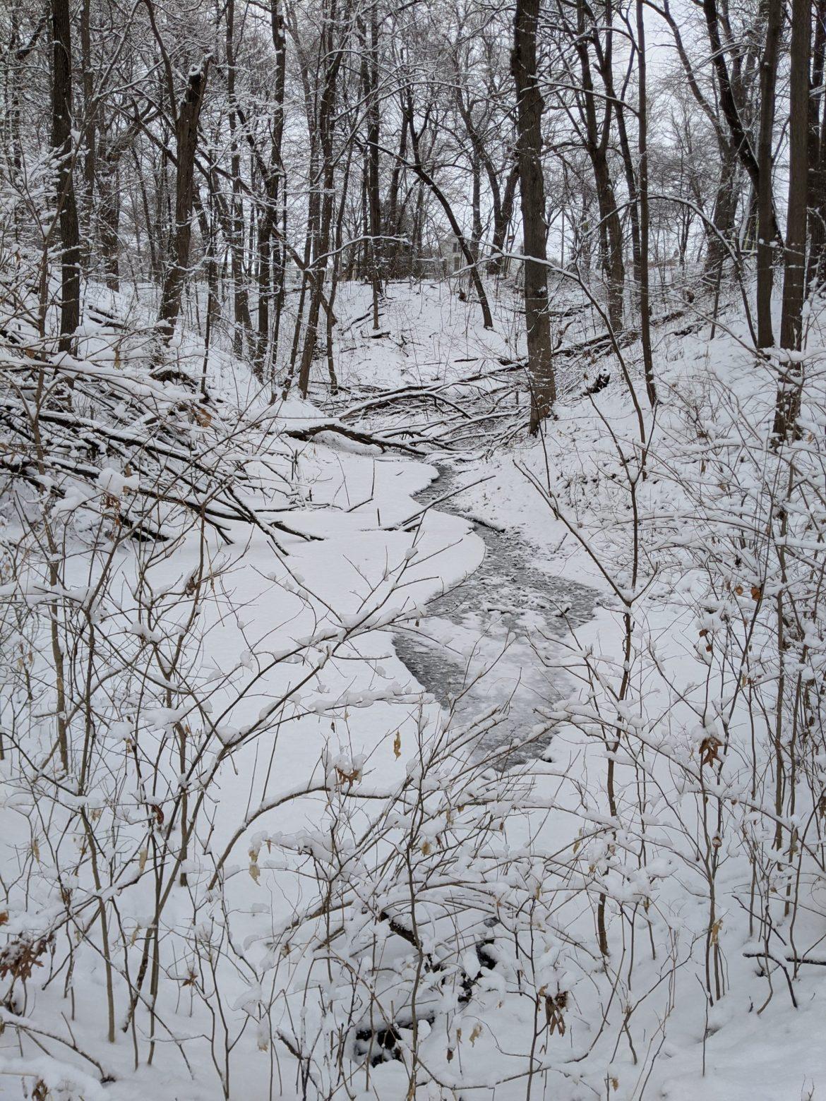 Snapshots of Winter10