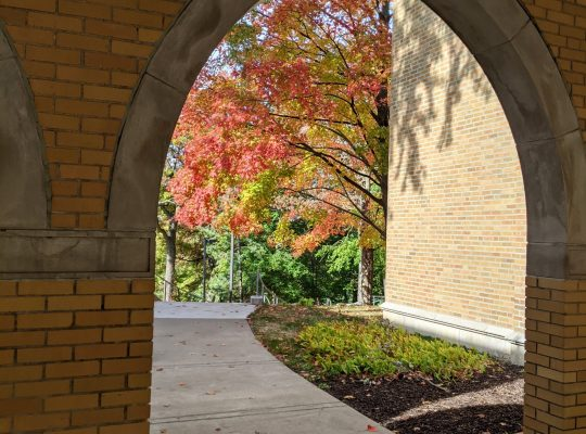 Autumn at Augie