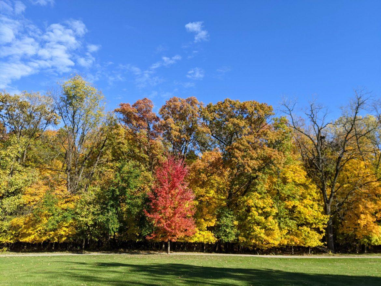 October Walking in Rock Island, Longer Walks