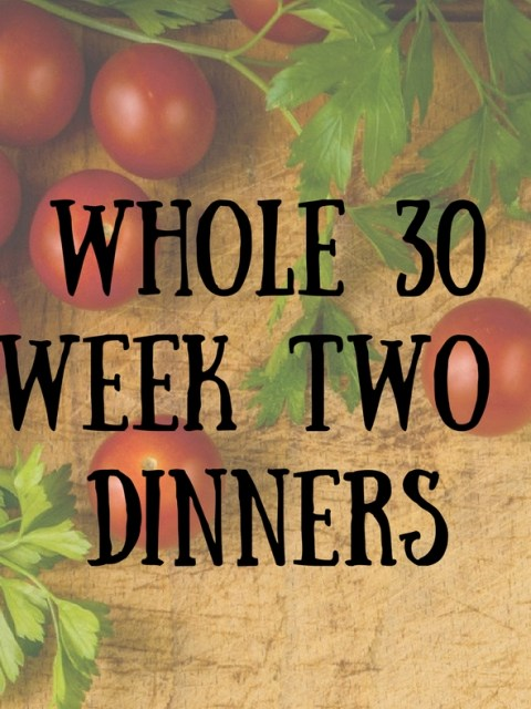 Whole 30 dinners   my week two Whole 30 meals   healthy recipes and tips   chimichurri sauce   chicken and gravy   chicken tikka masala   burgers with sweet potato buns   mocha rubbed pot roast   A Literary Feast
