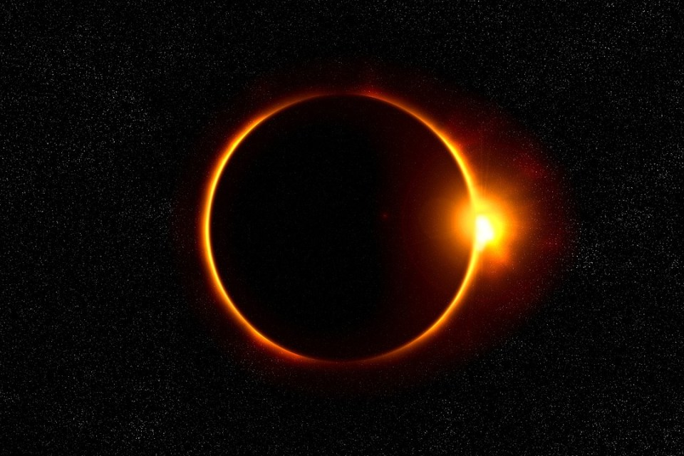 A Literary Feast | He Said She Said | solar eclipse | book review | solar eclipse glowing cake | activity for kids