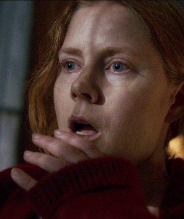 woman in the window anna
