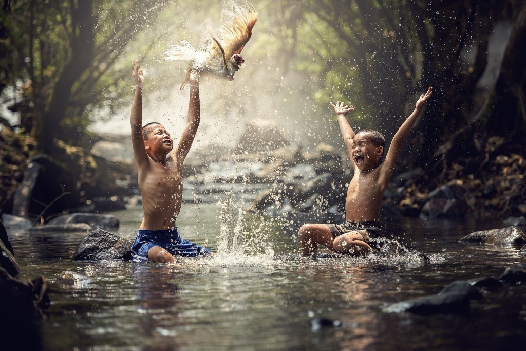 kids playing in water with bird