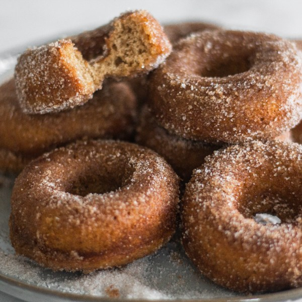 Apple Cider Doughnuts (baked)