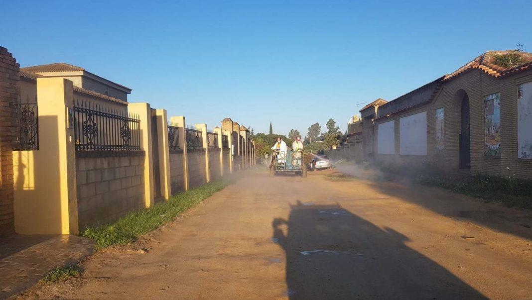 Imagen del Sector F de Almensilla durante la pandemia del coronavirus.