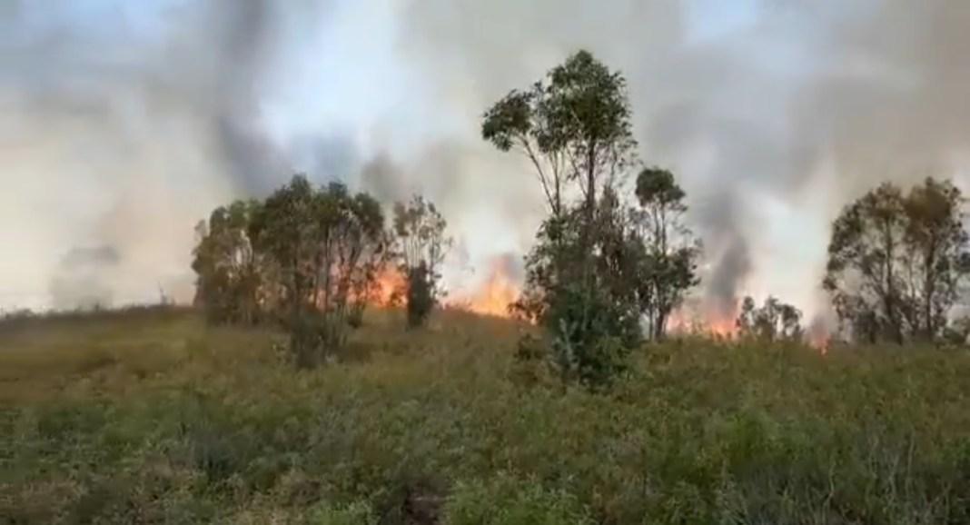Imagen del incendio en la Puebla del Río. Imagen de los Bomberos del Aljarafe