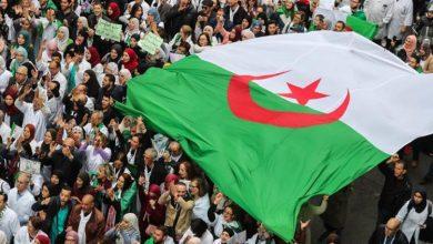 "Photo of ""القاعدة"" تتحالف مع ""رشاد"" و ""الماك"" لحرق الجزائر"
