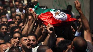 Photo of ارتفاع عدد الشهداء في غزة إلى 43 بينهم 13 طفلا
