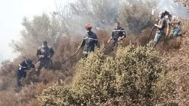 Photo of إخماد 33 حريق في الـ24 ساعة الأخيرة