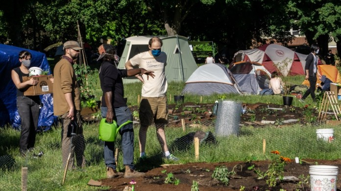 CHAZ Community Garden