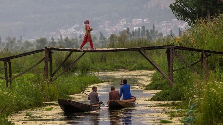 Kashmir land