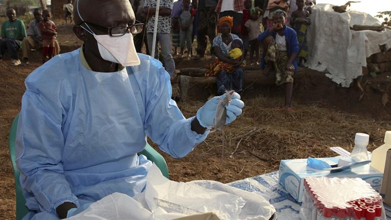 Image result for lassa fever nigeria