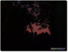coucher-de-soleil02