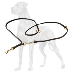 Dog Harness Walking Small Small Dog Harness Skulls Wiring