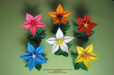 carambola flower origami diagram visual studio class association flowers and dragons by bob