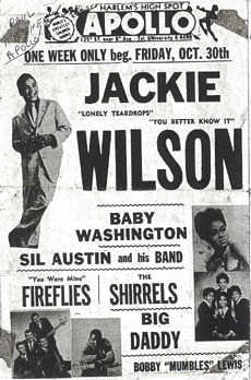 Image result for THE FIREFLIES RECORDS