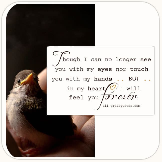 Though I Can No Longer See You With My Eyes Nor Touch You