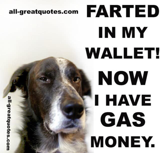 FARTED IN MY WALLET! NOW I HAVE GAS MONEY
