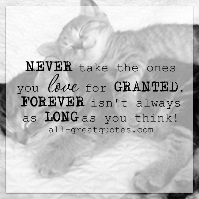 NEVER Take The Ones You Love For GRANTED Grief Quotes