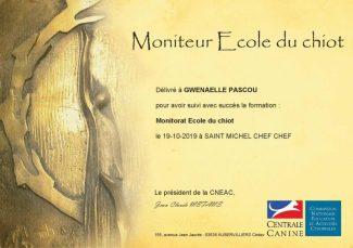 Moniteur Ecole du Chiot