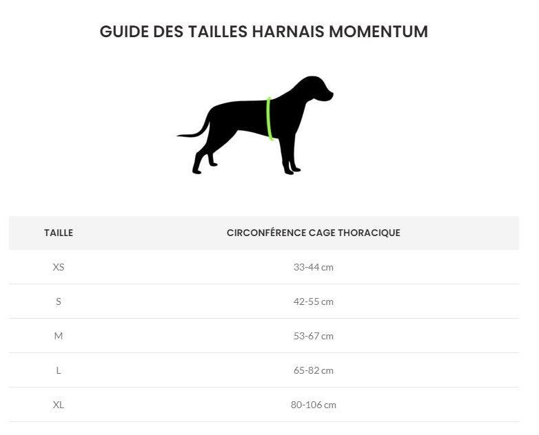 Guide des tailles harnais Kyflie Momentum