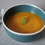 Schonkost Suppe mit Fenchel, Pastinake und Möhre