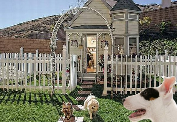 Amazing Dog House Designs - All About Dogs on squirrel home design, cat home design, funny home design, aquarius home design, snow home design, river home design, friends home design, pigeon home design, barclay home design, bear home design, fall home design, baby home design, family home design, turkey home design, female home design, wolf home design, rabbit home design, love home design, christmas home design, farm home design,