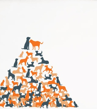 Number Of Dogs In The World