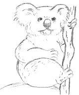 Simple Animal Pencil Drawings