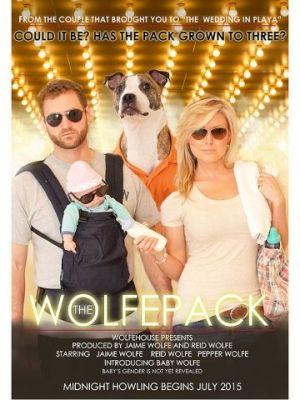 Pregnancy announcement Idea_Movie Poster