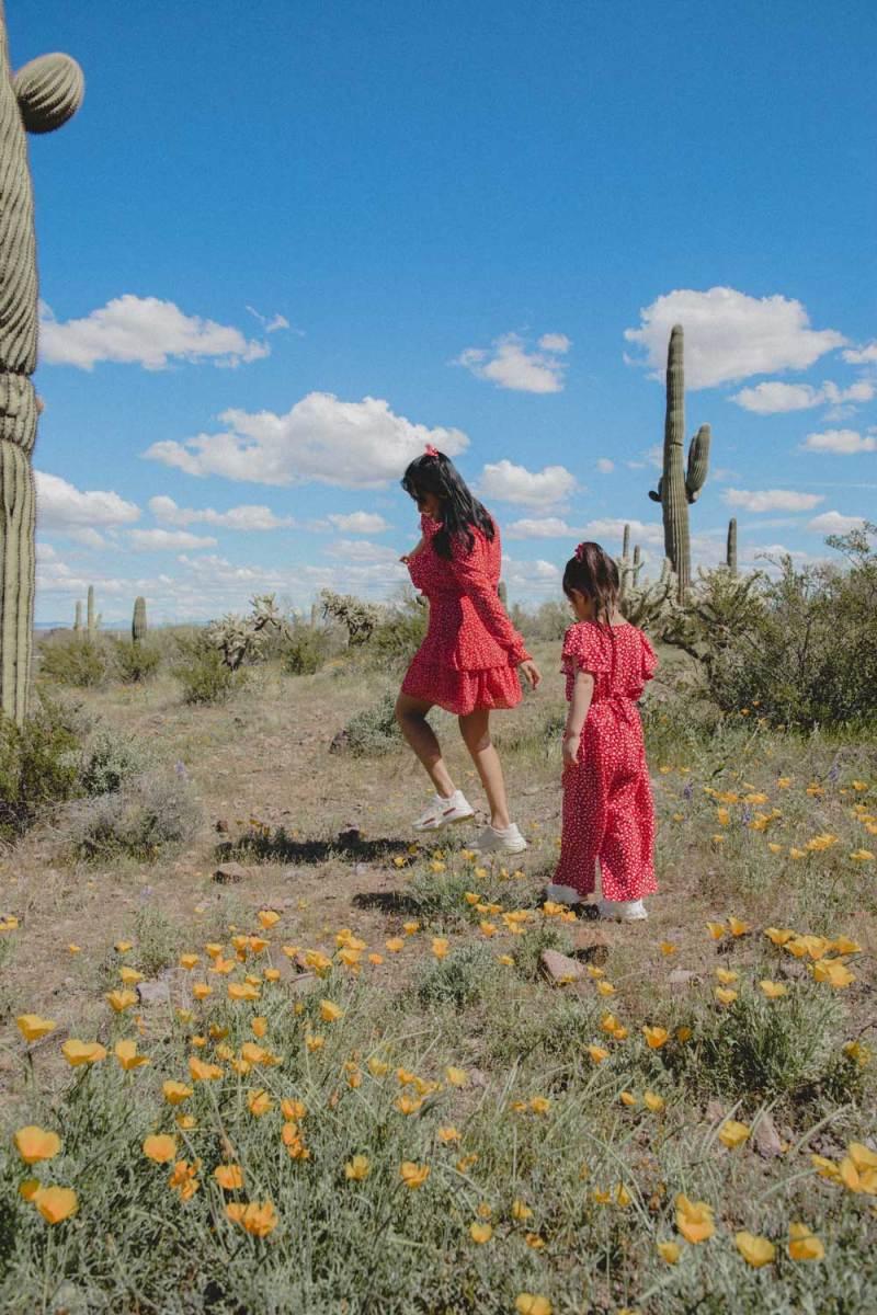Family Spring Lookbook| Picacho Peak State Park, AZ