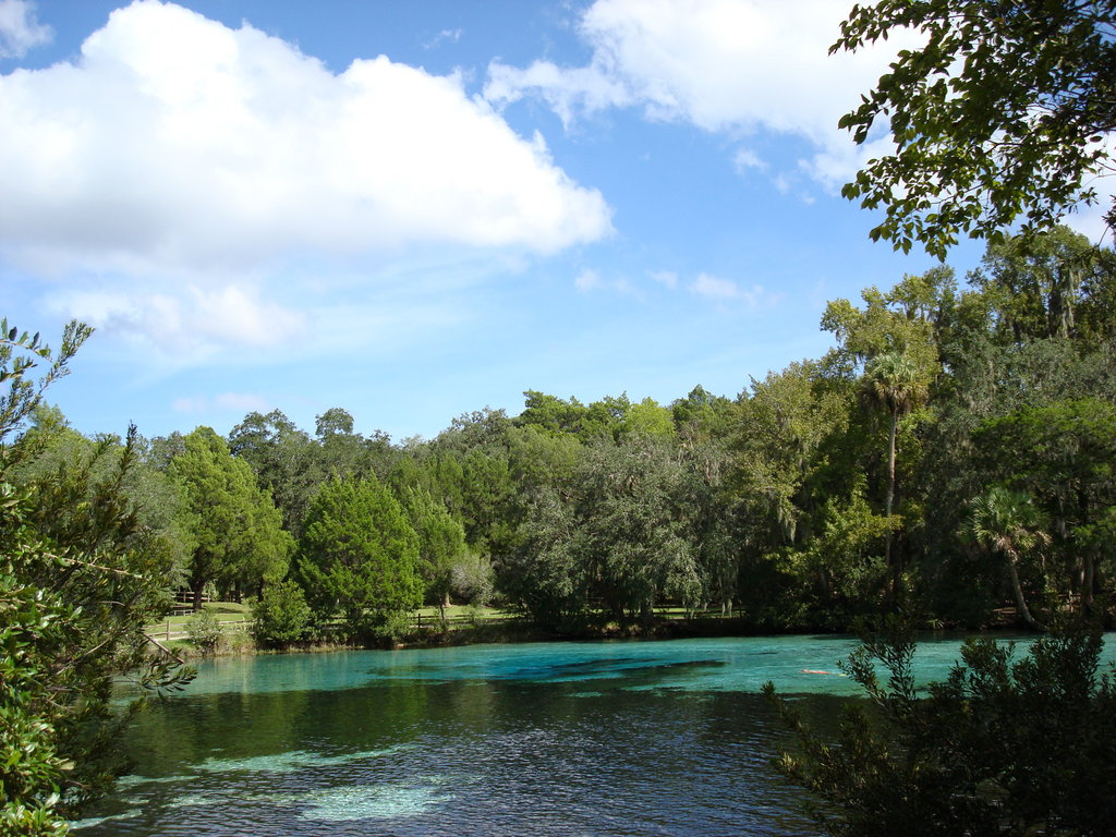 Silver Glen Springs  blue water blue sky  pictures