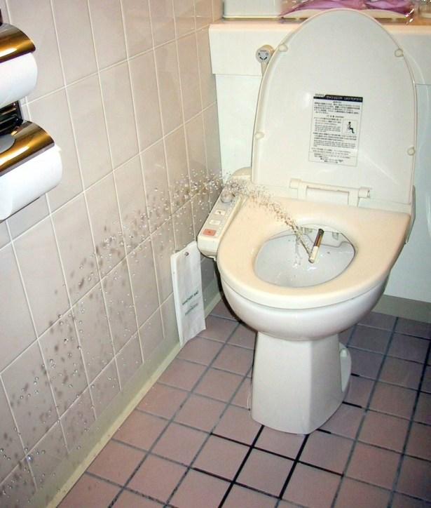 Japanese Toilet Bidet