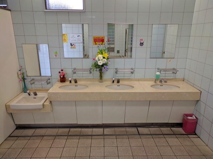 Kyushu Public Toilet Sink Area