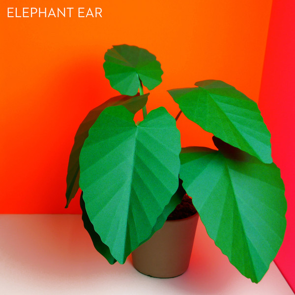 3_Paper_Plants_Product_O_P_elephant_ear_labled_grande