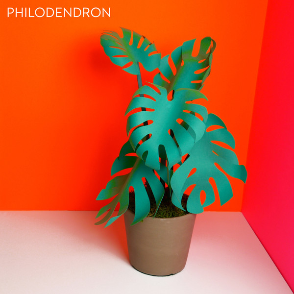 5_Paper_Plants_Product_O_P_monstera_labled_grande